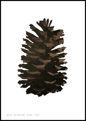 Pinecone no.01